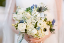 FLOWERS / by Karin Tintle