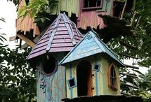 Mollie's tree house