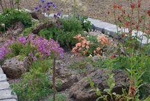 Garden Ideas / by Karen Gowen