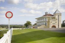 Towcester Racecourse Venue / Towcester Racecourse, one of Northamptonshire's most scenic venues. The beautiful parkland views and award winning stands offers both style and elegance to provide a fantastic setting for your event.