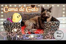 Diy para Pets / Como fazer uma cama para gato com caixa de papelão e feltro