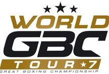 World GBC Tour 7 / gala de boxe pieds poings #K1 Samedi 04 october 2014 Mazan France Europe