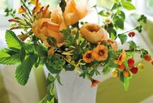 Floral Arrangements / by Veranda Magazine