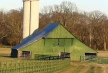Barns, Farms and Country / Barns and Farms have such character.   / by Gail Olds
