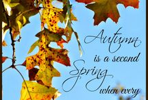 Quotes ~ Seasonal / Quotes about Winter, Spring, Summer, and Fall/Autumn.