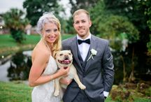 Weddings with Pets!