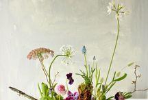 flower shop: arrangement