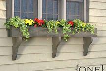 Gardening Goodies / by Chynna Kemp