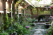 1st Street Garden Ideas