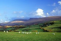 Brecon Beacons / Let the scent of fresh mountain dew and white floral blossoms transport you to the striking hills of the Brecon Beacons.