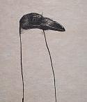 Animals / by Art Is... by Carol Burns