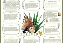 Aloe Vera Animal Care