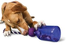 TOYS DOGS LOVE