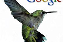 """Google Hummingbird SEO / The Hummingbird update will make """"conversational search"""" much easier for users. In other words, search results will be more tailored and specific to the content users are searching for #seo #google #hummingbird"""
