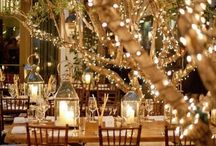 Sharee's Wedding Board / Brief: Garden wedding with fairy lights hanging from the trees.  Rustic style with hints of navy and gold.  Elements of lace and and babies breath.