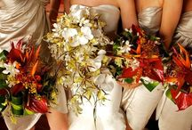 Hawaiian Wedding Flowers / by Diane Castro