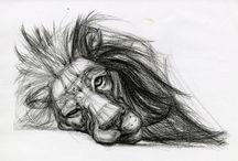 animal draws