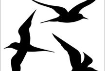 Kartoon vögel