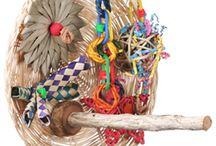 Perches & Perch Toys