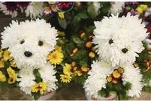 uprawa kwiatów