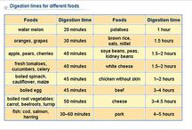 digestion time charts