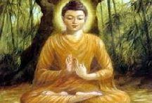 Boeddha / Alles over Boeddha