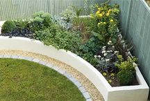 RaisedBeds; Vertical Gardening or Boxed Planters / Raised Beds, Vertical Gardening; and Planters; are backyard ideas for alternative planting and solve many gardening problems, including: Soil issues; Wet, damp & flooding areas; Small areas. Also see the other gardening boards: Growing Vegetable & Herb Gardens; Partitions & Ideas for Privacy | #gardenbeds |  / by Christine Sinclair
