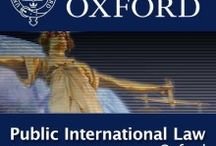 Fields and colleges / It describes the branches of law I am interested in and would like to specialise in and which colleges(abroad) I wish to join.