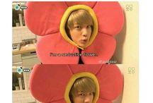 Jin Jokes (BTS)