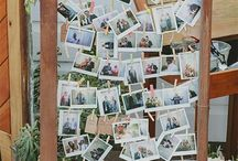 Polaroid Boards