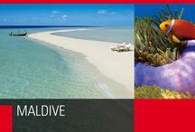 Maldive / Un bungalow, un'isola, un atollo, che per tutto il tempo che vorrete saranno l'unico mondo possibile, entro i confini del reef. Un sogno infinito al cui interno si ritagliano centinaia di altri sogni.