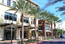 Best Shopping Centers
