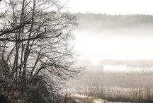 Inspiration Moodboard tuz gölü / finland archipelago