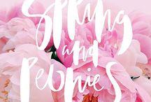 봄 포스터