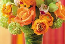 orange flowers / by Bloem.Flowers.Chocolate.Paperie