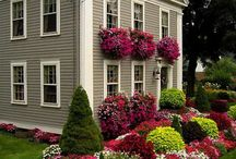 Home LANDSCAPING / Landscape Design
