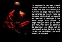 Sagesse Bouddhiste / Jolies images avec des textes contenant l'essence des enseignements du bouddhisme