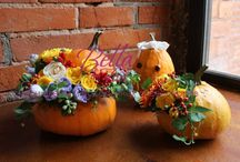 HALLOWEEN! / #halloween #beauty #flowers #bellalavita #pumpkin #holiday #emotions #decoration #halloweendecoration #centrepiece #halloweenflowers #presents #halloweenpresent #хэллоуин #тыква #цветы #красота #праздник #оформление #подарки
