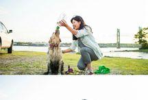 ~dog friendly travel~