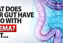 Eczema / Learn how Eczema is linked to the health of your Gut