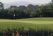 Golf Clubs / Just some of the golf clubs offering great membership deals on mygolfmembership.ie.