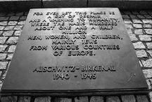 Sightseeing trip to Auschwitz / Activities in Krakow