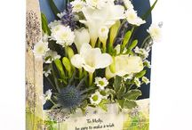 Fragrant Freesias / Gorgeously fragrant freesia Flowercards add the prettiest scent bursting with life and vitality.