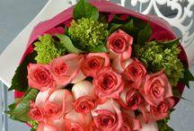 Monsanel Gifts & Flowers / Flowers, arrangements, florist, roses, lily's, bouquets, events, flower design, flowers boutique, flower shop. / by Elena Monsanto