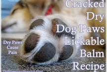 DIY crack paws ❤️