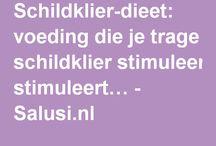 schilklier