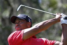 Golf / sport passion