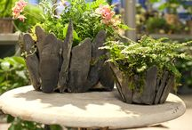 Gardening / Stone pot