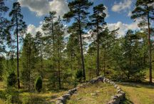 The Baltics