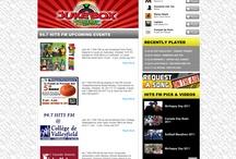 Our Web Design Portfolio / PearlWhiteMedia.com Web Design Portfolio
